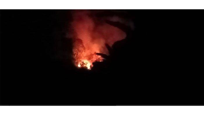 Kebakaran Lahan di Bungus Teluk Kabung Kamis Malam, Camat: Tidak Sampai Meluas