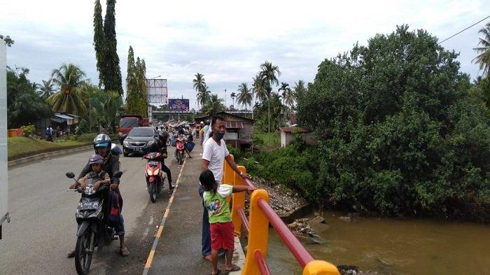 Kemunculan Seekor Buaya di Bawah Jembatan Duku, Jalan DukuJorong Kasang, Padang Pariaman, Sabtu (27/03/2021) pukul 10.00 WIB, Jadi Tontonan Masyarakat dan Pengguna Jalan
