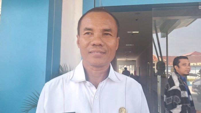 Soal Iklan Pulau A-Frames Mentawai Dijual di Situs Private Island, Yosmeri: Pemda Cek Informasi