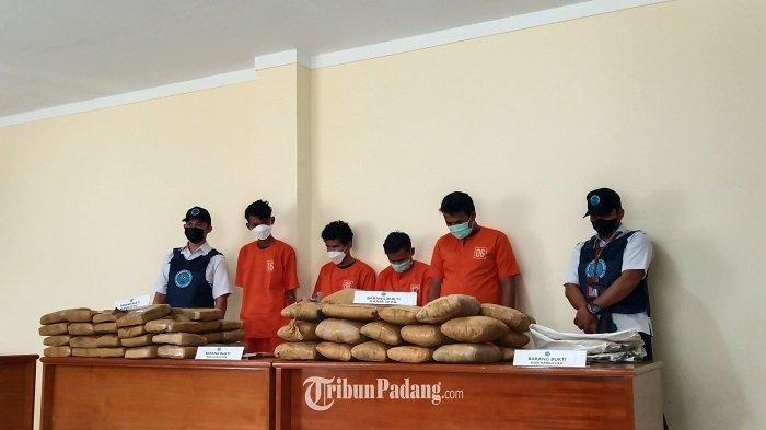 BNN Provinsi Sumbar dan BNN Kota Payakumbuh Amankan 80 Kg Ganja dari 2 TKP, dan 4 Lelaki Baju Oranye