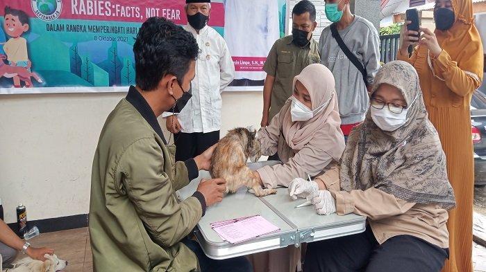 Dinas Pertanian Kota Padang Gencar Lakukan Vaksinasi Rabies, Sasarannya Kucing, Anjing, dan Kera