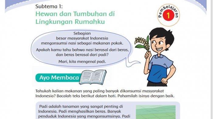 Kunci Jawaban Tema 3 Kelas 4 Halaman 2 3 4 6 Pembelajaran 1 Subtema Hewan Dan Tumbuhan Di Lingkungan Tribun Padang