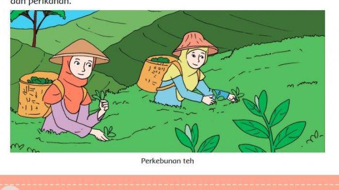 KUNCI JAWABAN Tema 8 Kelas 5 Hal 26, Aktivitas Penduduk Sekitar yang Memanfaatkan Sumber Daya Alam