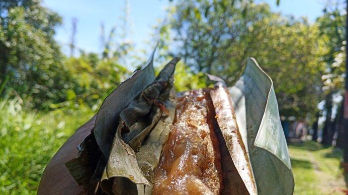 Cicipi Lompong Sagu, Cemilan Panggang Khas Minang yang Mulai Langka, Dibakar Pakai Sabut Kelapa