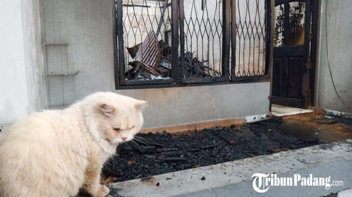 Rumah Terbakar Saat Hujan di Kota Padang, Diduga Terjadi Korsleting Listrik