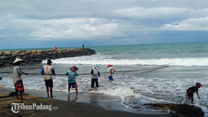 Melihat Aktivitas Maelo Pukek di Pantai Padang, Ikan yang Dapat Langsung di Jual ke Masyarakat
