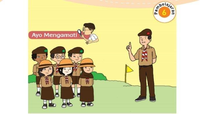 Berapa banyak perbedaan rumah di Jalan Kamboja dan Jalan Mawar,Tema 8 Kelas 3 SD Membuat Diagram
