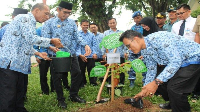 Pohon Andalas, Flora Identitas Sumatera Barat Bakal Ditanam Untuk Menetralisir Pencemaran Udara