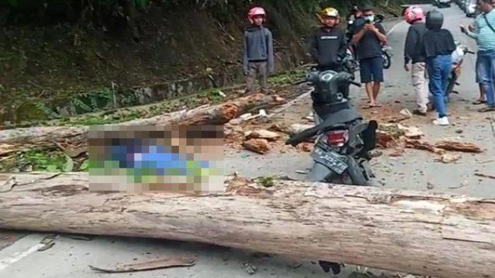 Mahasiswa Unand yang Tewas Tertimpa Pohon Tumbang di Sitinjau Lauik Pakai Honda Beat Putih Biru