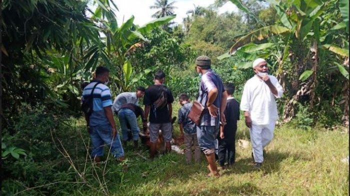 Jumlah Hewan Kurban yang Disembelih di Padang Idul Adha 2021 Lebih dari 7 Ribu Ekor