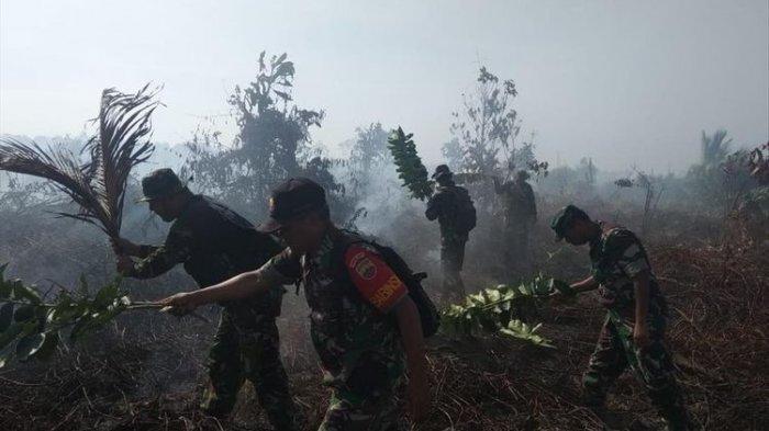 Sekitar 75 Hektare Hutan Produksi Konversi di Pesisi Selatan Terbakar, Polisi Selidiki Penyebabnya