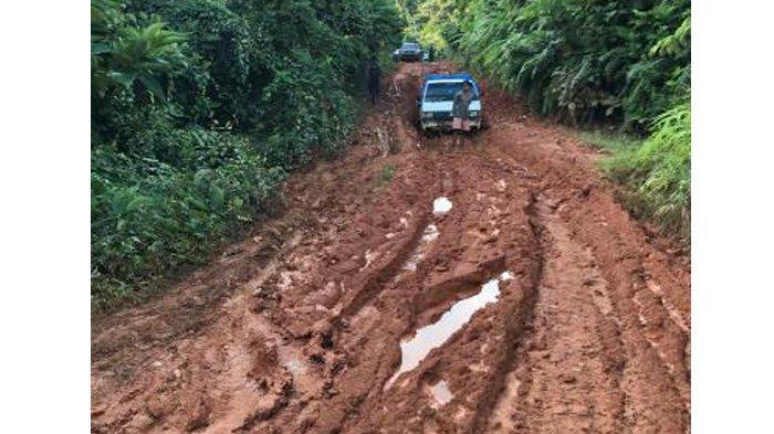 Melewati Jalan Tanah dan Berlumpur Sedalam 1 Meter Demi Vaksinasi Warga di Solok Selatan