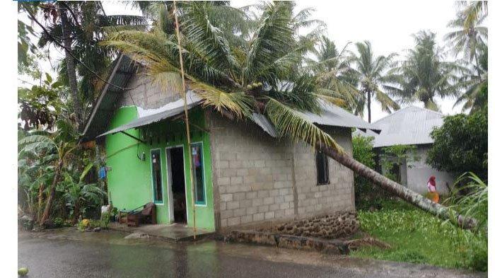Pohon tumbang menimpa rumah di Padang. Sebanyak 21 pohon di Padang dilaporkan tumbang hingga Kamis (1/4/2021) pagi setelah terjadi angin kencang dan hujan.  Sebanyak 12 pohon tumbang menimpa rumah warga hingga musalla
