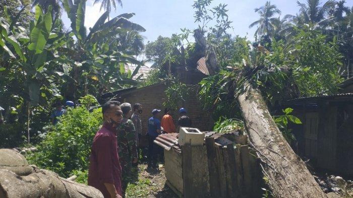 Pohon Tumbang Timpa Rumah Warga di Padang Pariaman, Kepala BPBD: Waspada 24 Jam