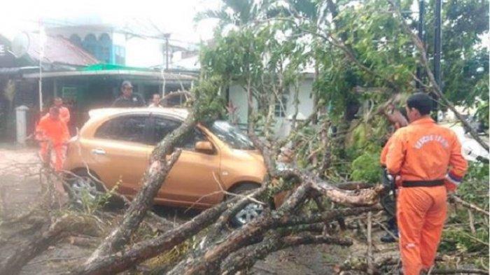 Angin Badai Menerjang Kota Padang, Pohon Tumbang di Mana-mana, Menimpa Mobil hingga Rumah Warga