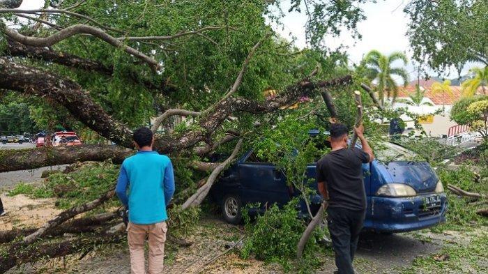 Pohon tumbang timpa mobil di Jalan Gereja, Padang, Jumat (2/4/2021).