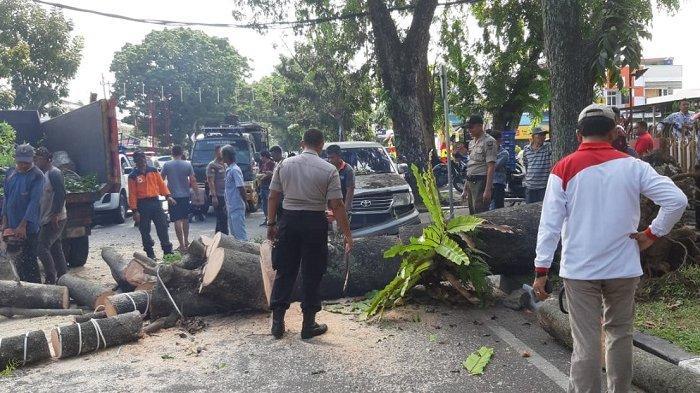 Pohon Tumbang Timpa Dua Mobil, Akses Jalan Ahmad Yani Kota Padang Jadi Terganggu