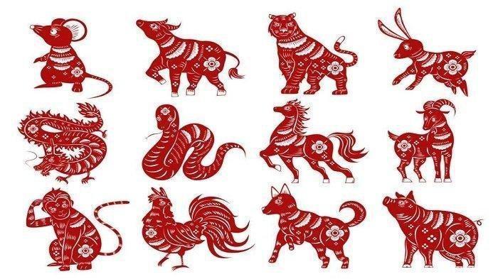 Ramalan Shio Senin 9 Maret 2020, Shio Kuda Stabil dan Cinta Damai, Shio Monyet Hari Ini Bahagia