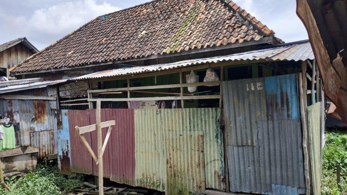 Bandar Arisan Bawa Kabur Uang Rp1 Miliar, Ternyata Rumahnya Berdinding Seng, Berlantai Papan