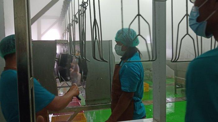 Rumah Potong Unggas akan Dorong Padang sebagai Kota Halal dari Hulu ke Hilir
