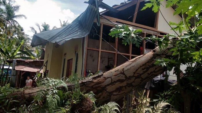 3 Pohon Tumbang di Padang, Timpa 2 Rumah Warga, 1 Ruko dan 1 Motor Vario
