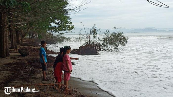BMKG Minta Waspadai Banjir Rob dan Gelombang, Abrasi Ancam Pesisir Pantai di Sumbar