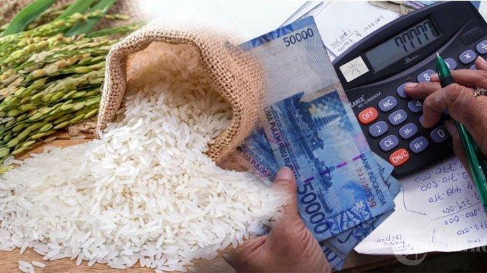 Bayar Zakat Fitrah di Bukittinggi, Sesuai Harga Tiga Jenis Kualitas Beras