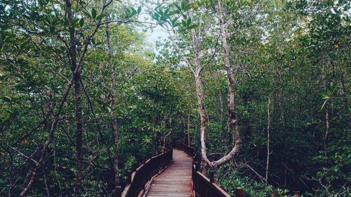 Bagaimana Masyarakat Sekitar Memanfaatkan Sumber Daya Alam di Daerah Tempat Tinggalmu?