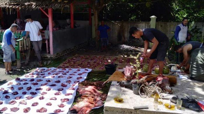 3 Ekor Sapi Disembelih di Halaman Belakang Disdikpora Pariaman, 250 Kupon Kurban Dibagikan