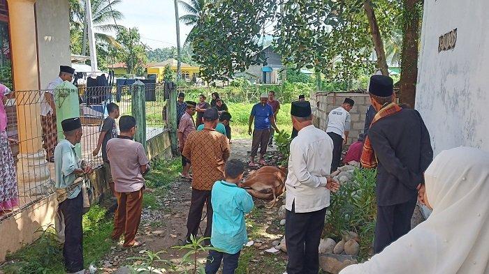 Jamaah Tarekat Naqsabandiyah di Padang Laksanakan Salat Idul Adha dan Sembelih Hewan Kurban