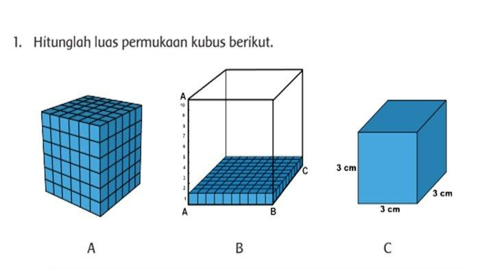Apakah Bentuk Jaring-Jaring yang Berbeda Mempengaruhi Luas Jaring-Jaring Kubus?