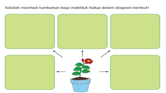 Kunci Jawaban Buku Tema 1 Kelas 6 SD Halaman 40