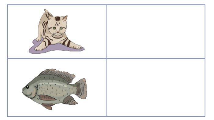 Apa Perbedaan Antara Tempat Hidup Kucing dan Ikan? JAWABAN Tema 3 Kelas 4 Halaman 77