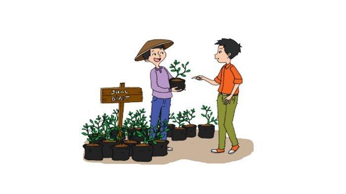 Apakah Tanaman yang Kamu Tanam Dapat Tumbuh dengan Baik? Kunci Jawaban Tema 3 Kelas 4 Halaman 45