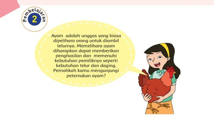 Apa Pendapatmu Tentang Sikap Penduduk? Jawaban Buku Tema 1 Kelas 6 Halaman 75