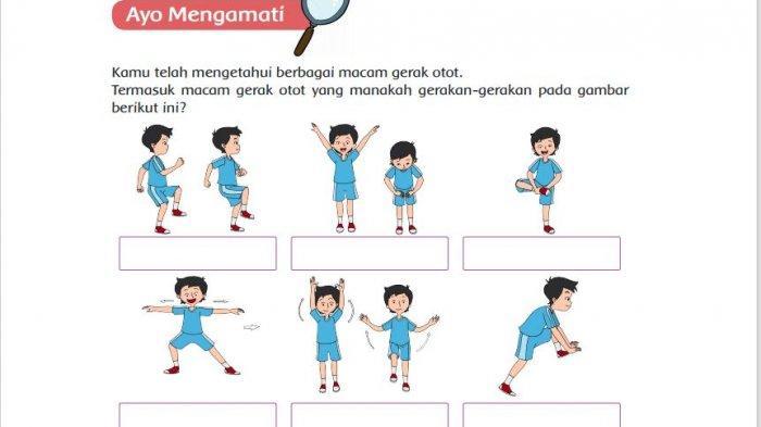 Termasuk Macam Gerak Otot yang Manakah Gerakan-gerakan pada Gambar Halaman 114 Buku Tema 1 Kelas 5