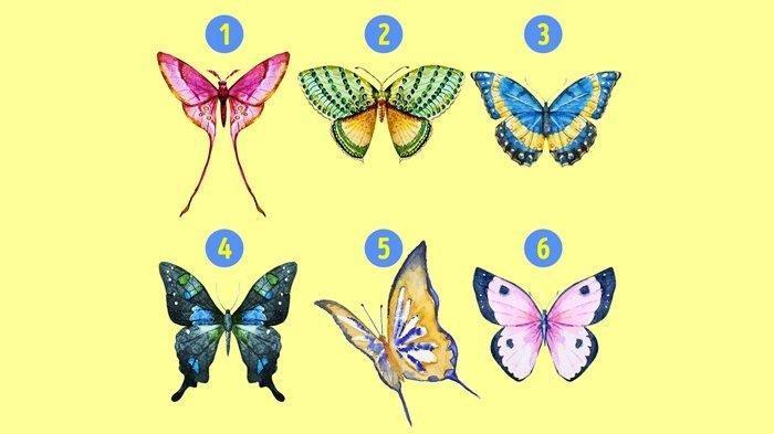 Kunci Jawaban Tema 3 Kelas 4 Halaman 52: Di Mana Kupu-kupu Hidup? Jelaskan!