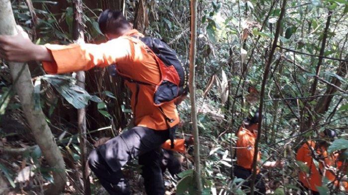 Kronologis Kakek 82 Tahun Hilang di Hutan Jorong Baringin Kabupaten 50 Kota Sumbar