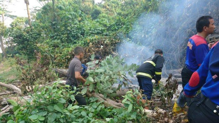 Tim Gabungan Kesulitan Padamkan Api Kebakaran Lahan di Bukit Kandang Padang