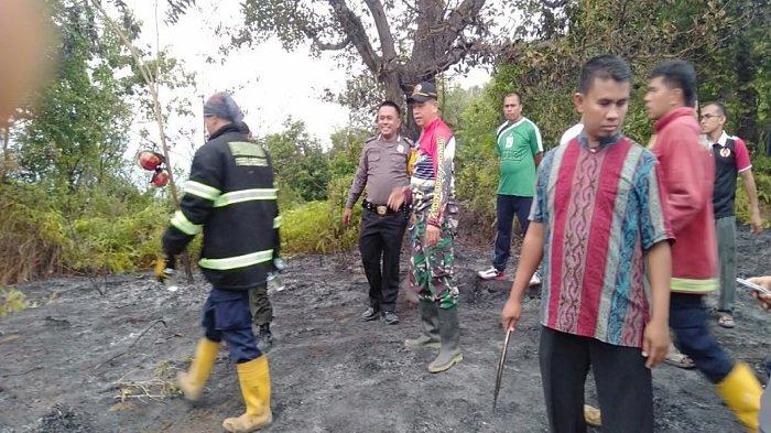 Kota Padang Sempat Dilanda Kebakaran Lahan, Terjadi di 3 Lokasi Selama 2 Hari Terakhir