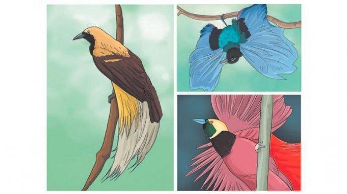 Tulis Paling Sedikit 4 Pertanyaan tentang Burung Cenderawasih! Jawaban Tema 3 Kelas 4 Halaman 48
