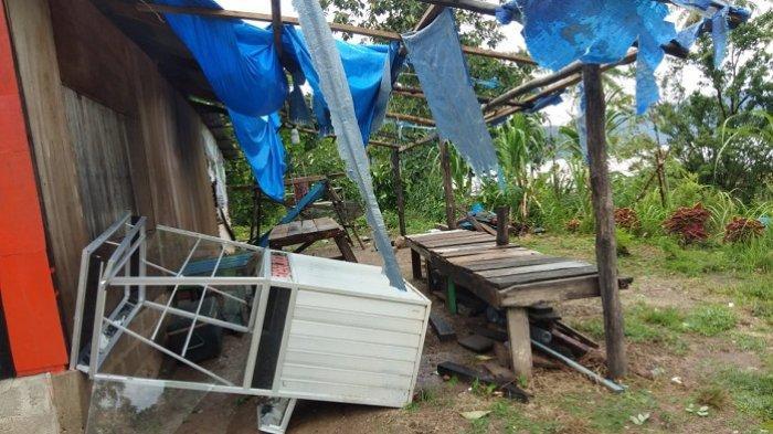 Angin Kencang Melanda Kota Padang, 5 Pohon Tumbang, Warung Warga Porak-poranda