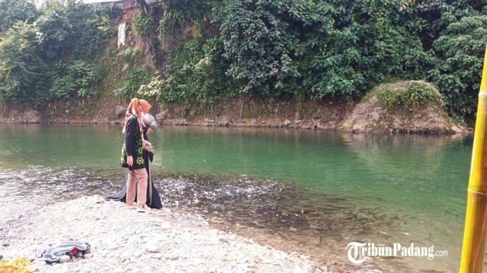 Wisata Alternatif di Padang, Berenang dan Mengintip Ikan Larangan Lubuk Lukum di Lubuk Minturun