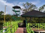 apar-pariaman-mangrove-park.jpg