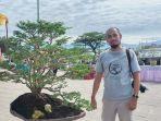 kingkit-bonsa1.jpg
