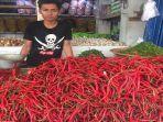 pedagang-cabai-di-pasar-raya-padang-yudha-aditya-maulanajpg.jpg