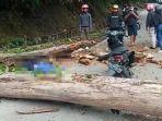 pengendara-sepeda-motor-yang-melintas-di-sitinjau-lauik-padang-tertimpa-pohon-rabu-30122020.jpg
