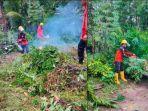 petugas-bpbd-padang-pariaman-melakukan-pembersihan-pohon-tumbang.jpg