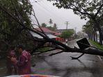 pohon-tumbang-yang-menghambat-akses-jalan-di-kota-padang-minggu-1752020.jpg