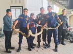 seekor-ular-piton-ditemukan-di-basemant-parkiran.jpg